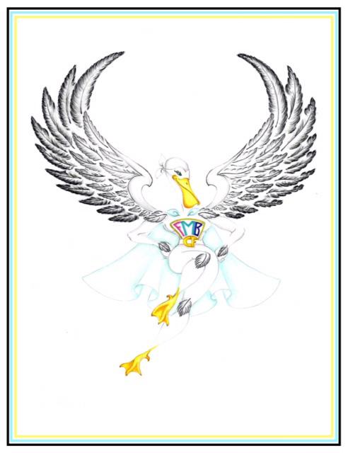 fmb-pelican-heroine-fmb-community-foundation