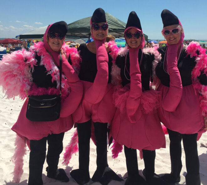 flamingos on the beach-members of the foundation dressed as pink flamingos